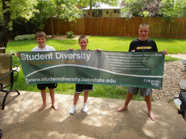 CSU Student Diversity