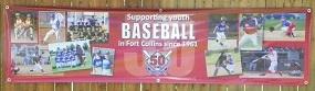 Fort Collins Baseball